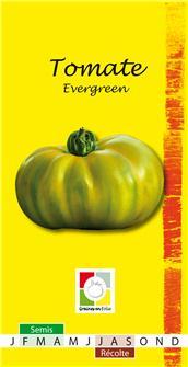 Tomate Evergreen AB Bio
