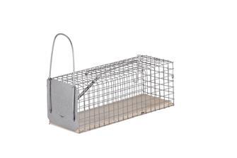 Souricière cage piège à rats 1 entrée